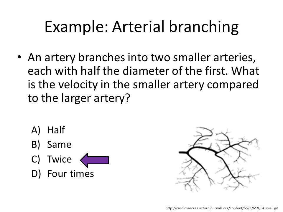 Example: Arterial branching