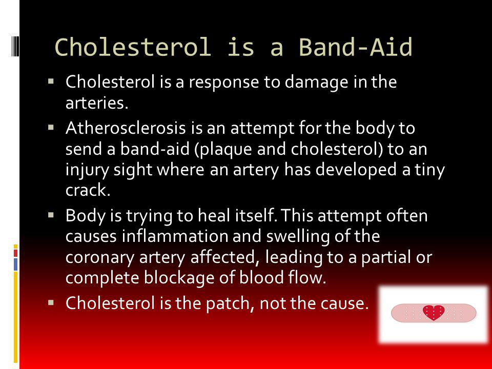 Cholesterol is a Band-Aid