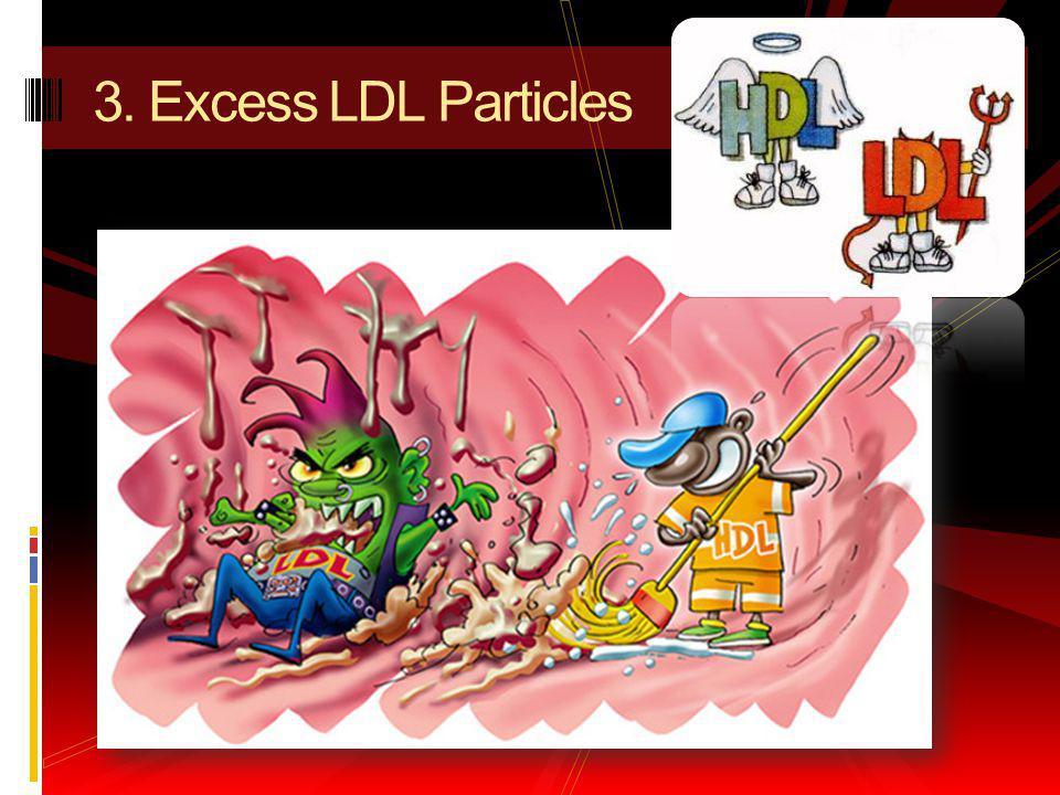 3. Excess LDL Particles