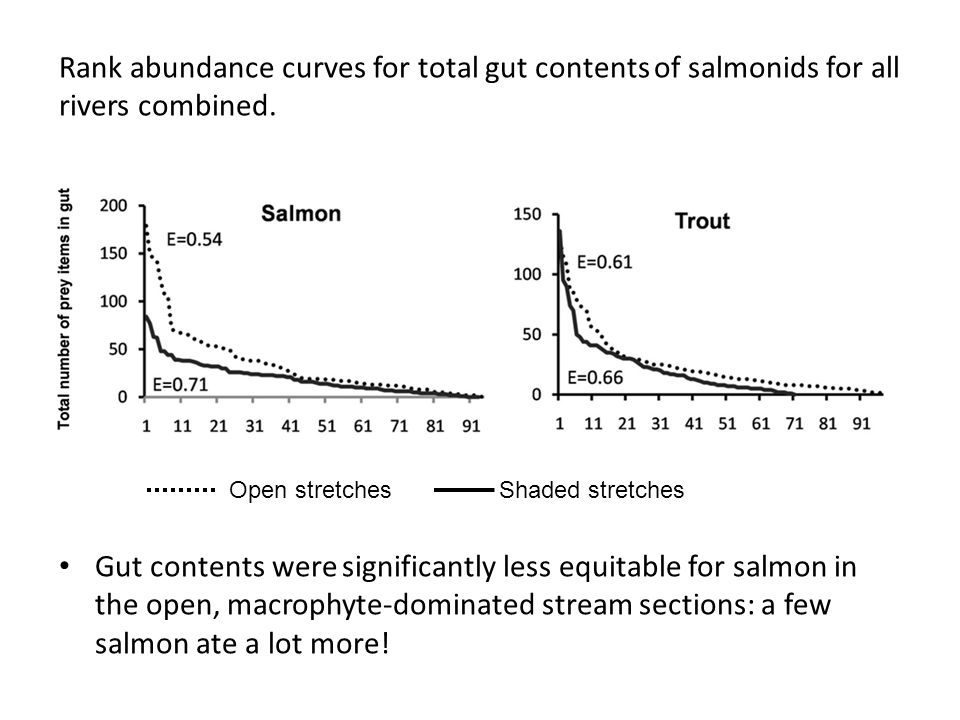 Rank abundance curves for total gut contents of salmonids for all rivers combined.