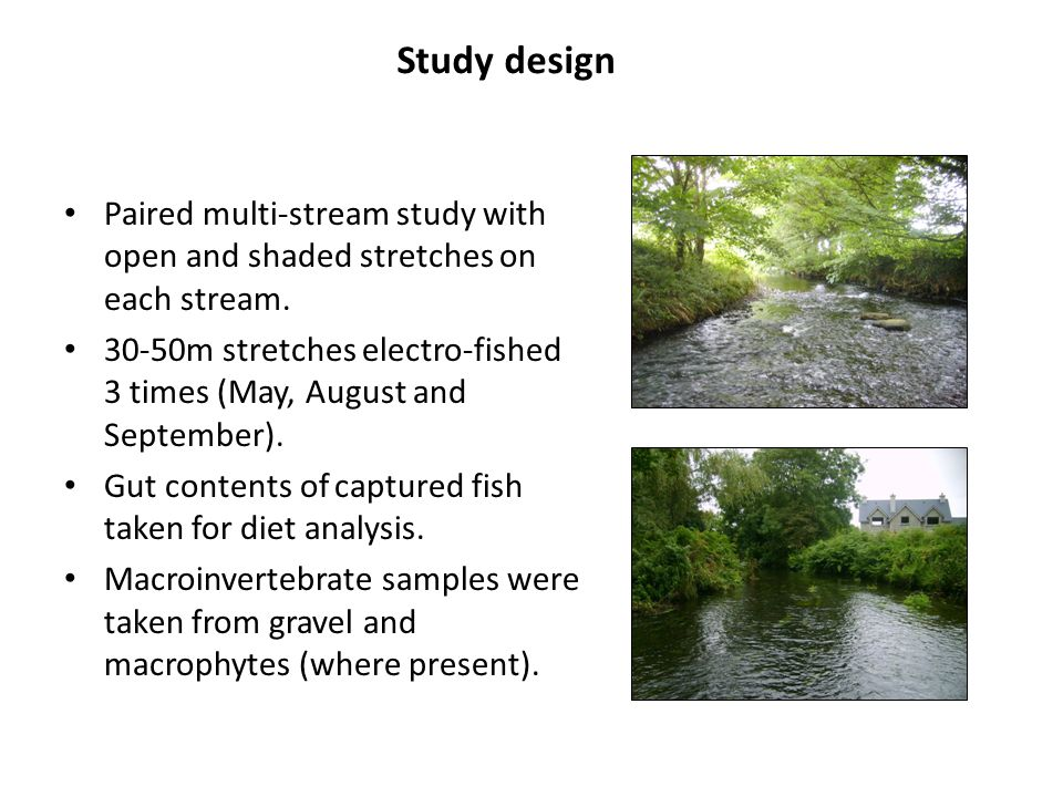 Study design Paired multi-stream study with open and shaded stretches on each stream.