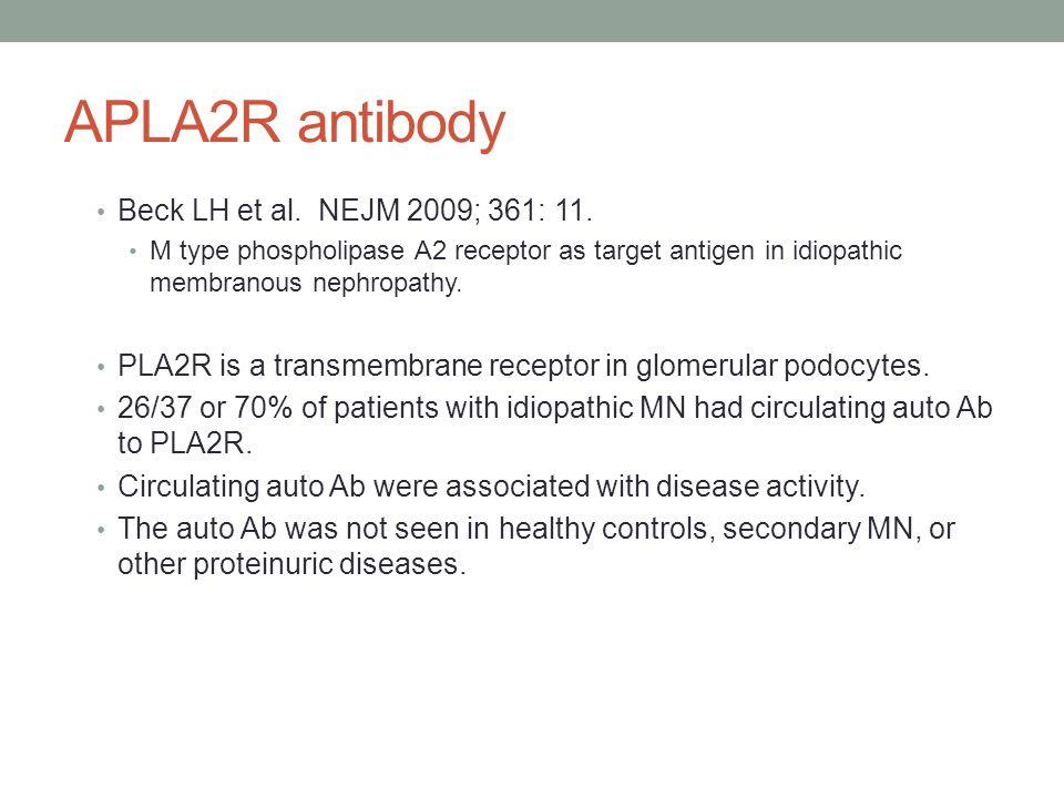 APLA2R antibody Beck LH et al. NEJM 2009; 361: 11.