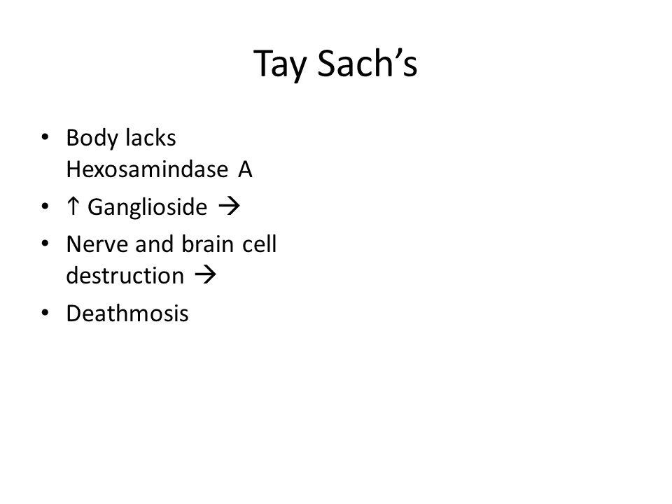 Tay Sach's Body lacks Hexosamindase A h Ganglioside 
