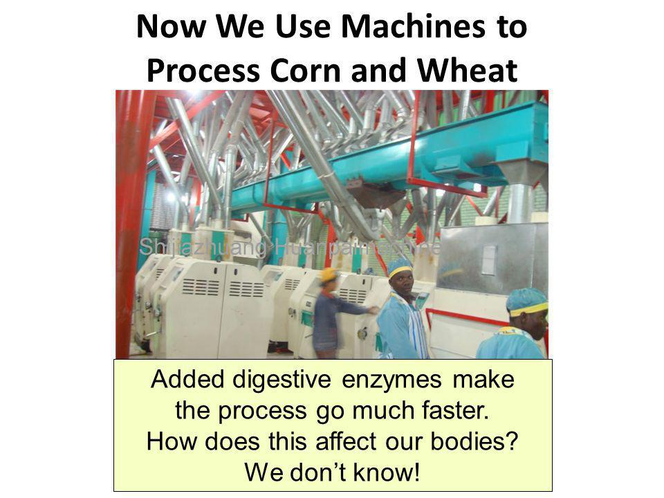 Now We Use Machines to Process Corn and Wheat