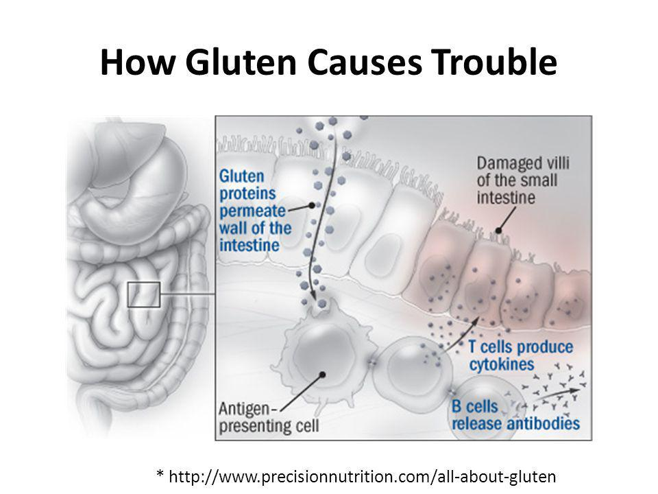 How Gluten Causes Trouble
