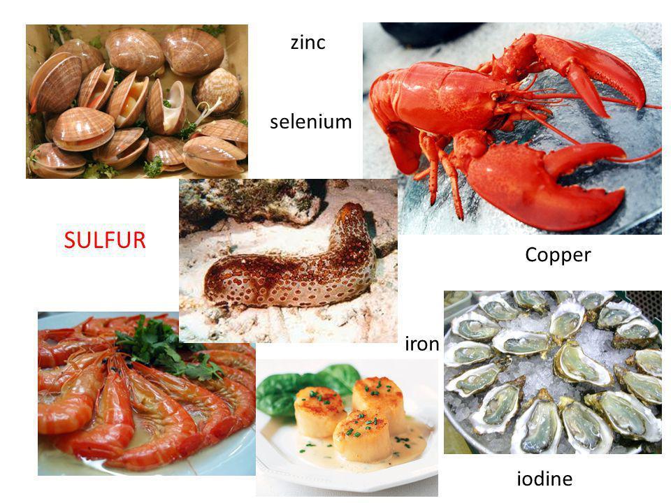 zinc selenium SULFUR Copper iron iodine