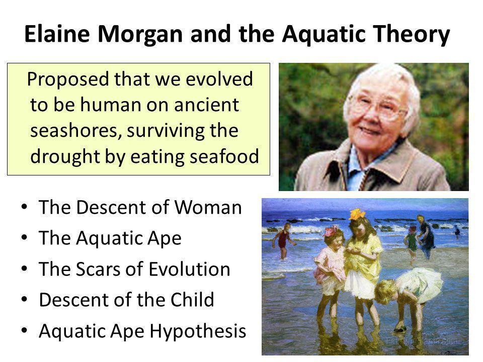 Elaine Morgan and the Aquatic Theory