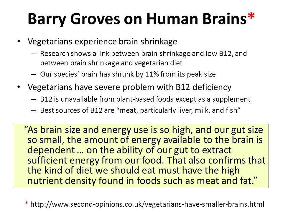 Barry Groves on Human Brains*