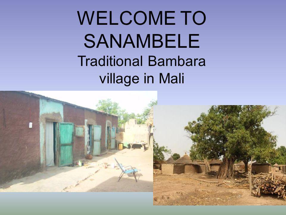 Traditional Bambara village in Mali