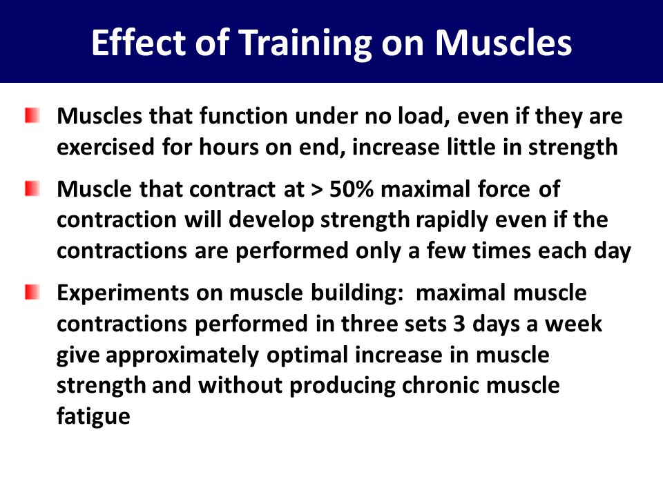 Effect of Training on Muscles