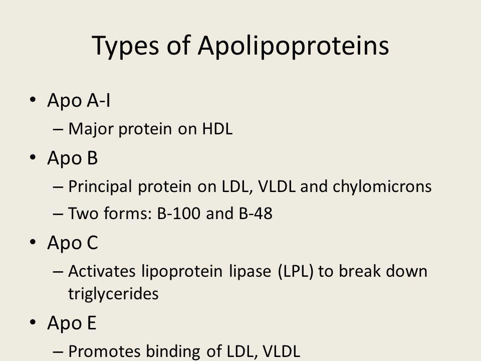 Types of Apolipoproteins