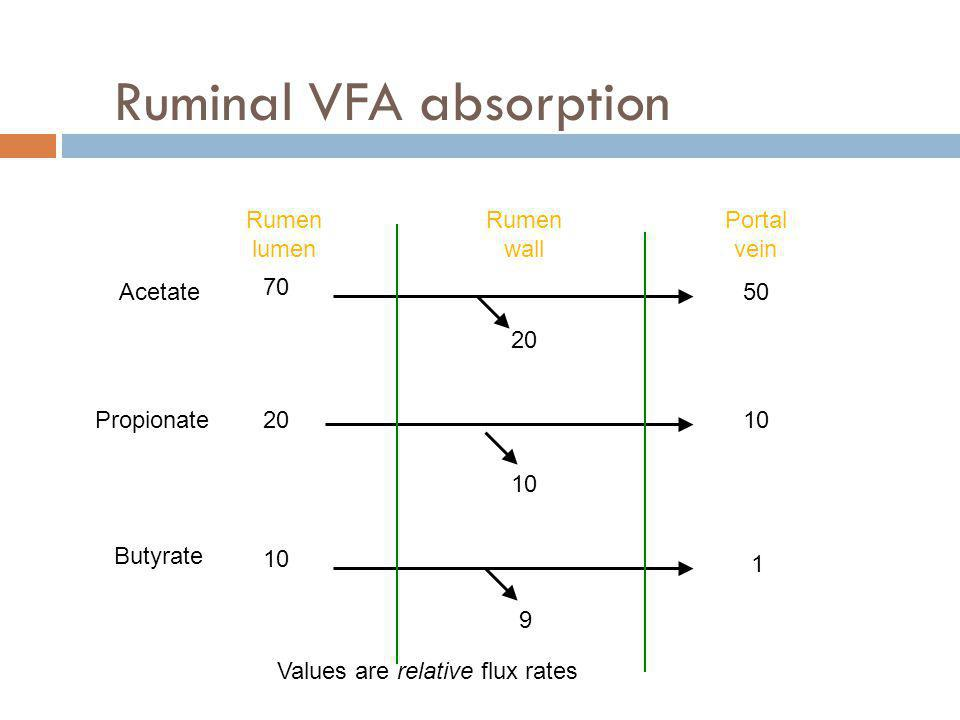 Ruminal VFA absorption