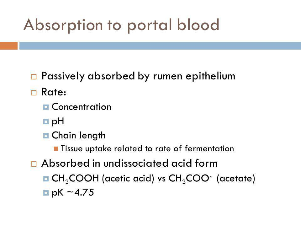 Absorption to portal blood