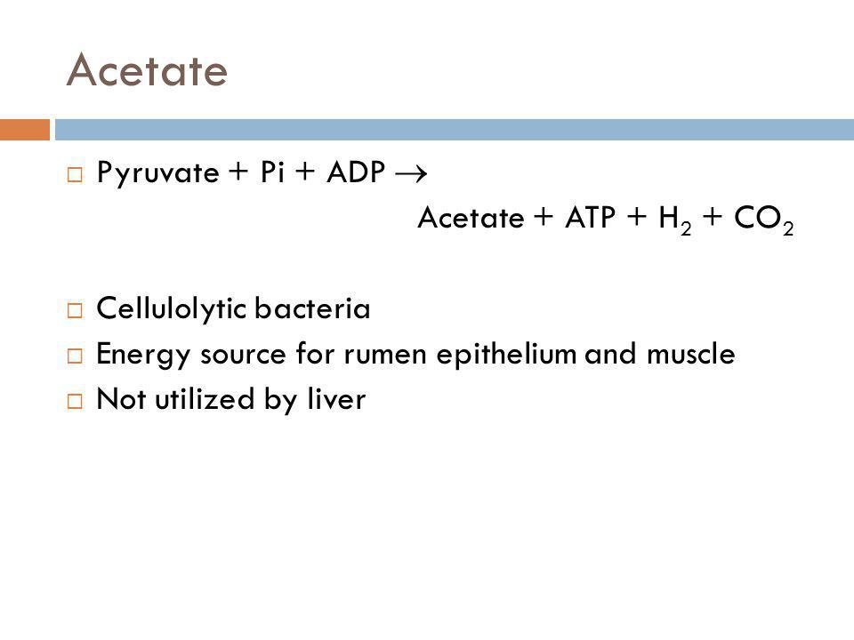 Acetate Pyruvate + Pi + ADP  Acetate + ATP + H2 + CO2