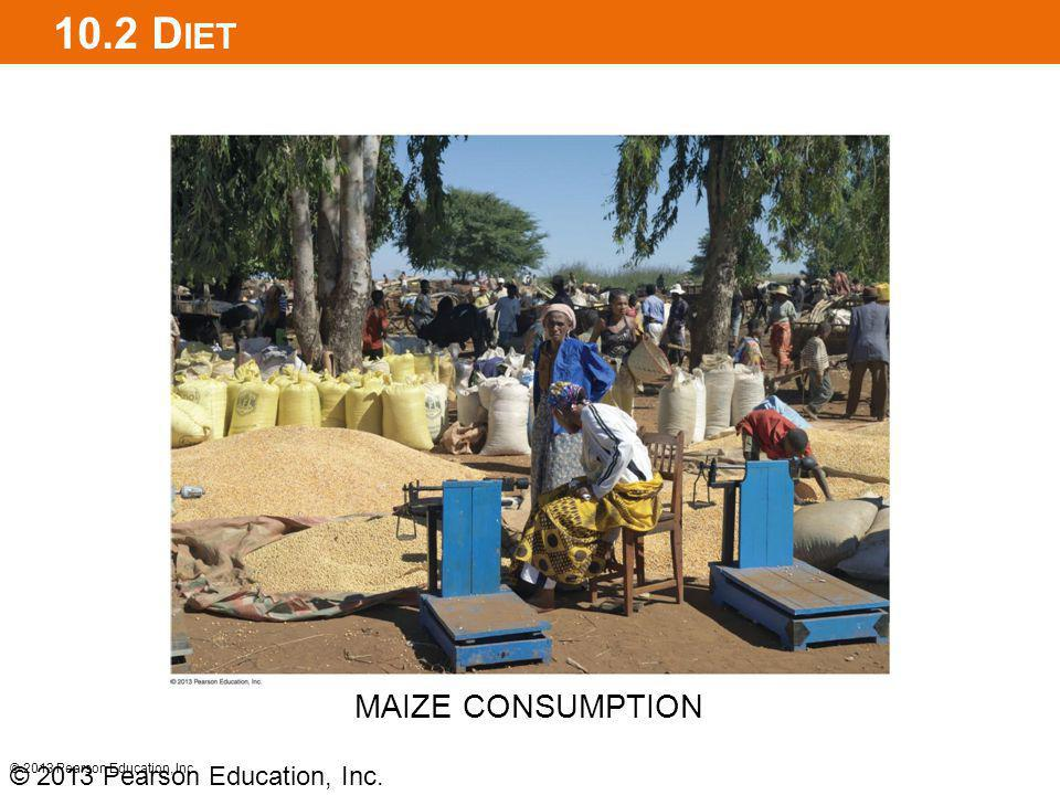 10.2 Diet MAIZE CONSUMPTION © 2013 Pearson Education, Inc.