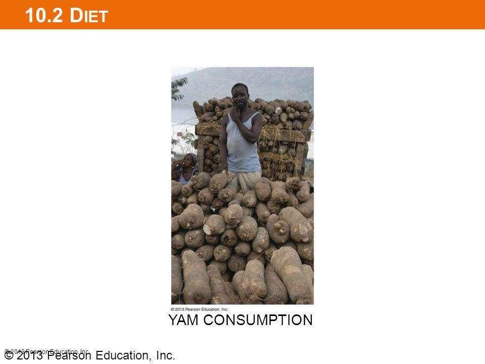 10.2 Diet YAM CONSUMPTION © 2013 Pearson Education, Inc.