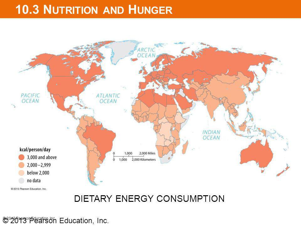 10.3 Nutrition and Hunger DIETARY ENERGY CONSUMPTION