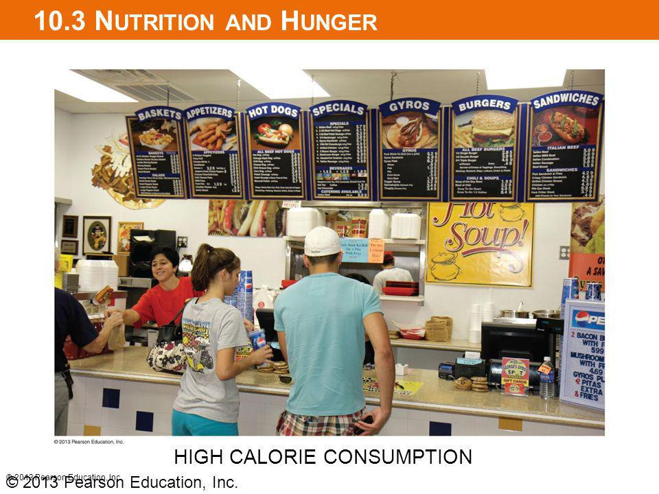 10.3 Nutrition and Hunger HIGH CALORIE CONSUMPTION