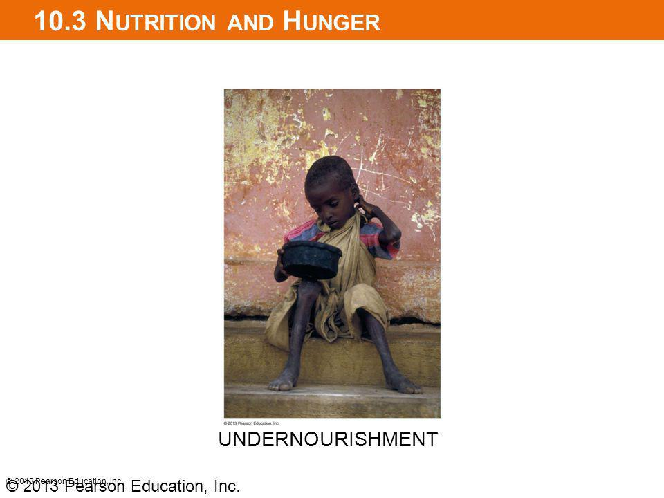 10.3 Nutrition and Hunger UNDERNOURISHMENT