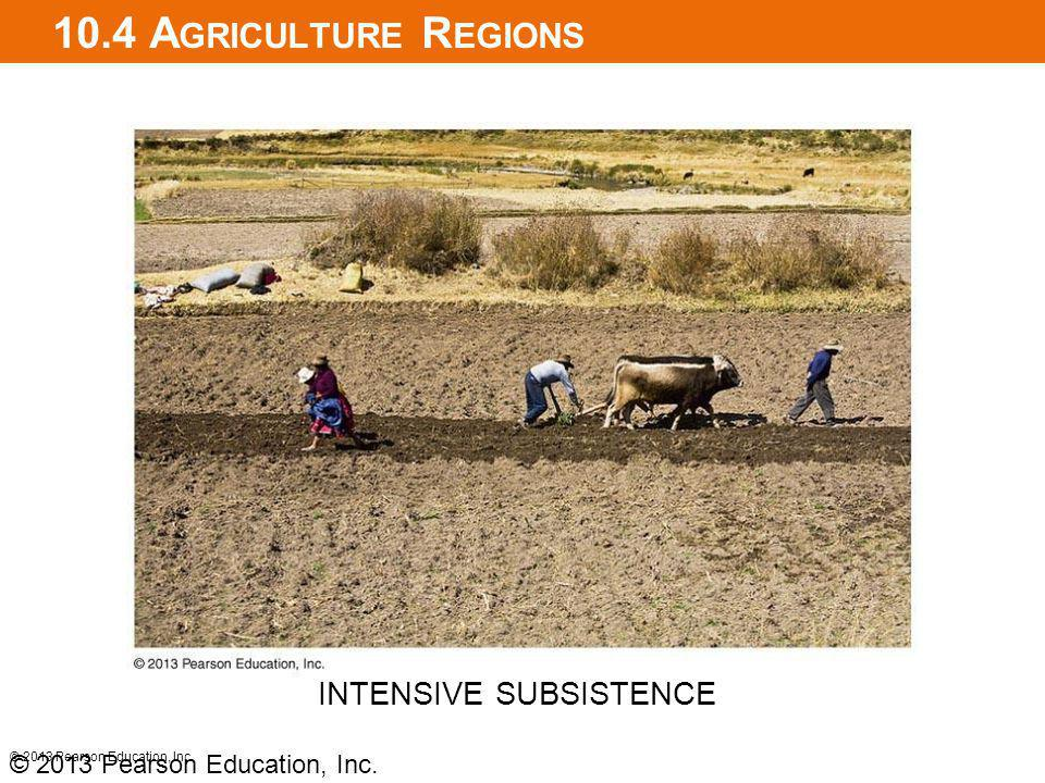 10.4 Agriculture Regions INTENSIVE SUBSISTENCE
