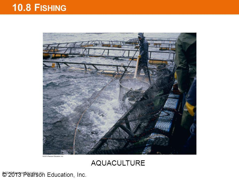 10.8 Fishing AQUACULTURE © 2013 Pearson Education, Inc.