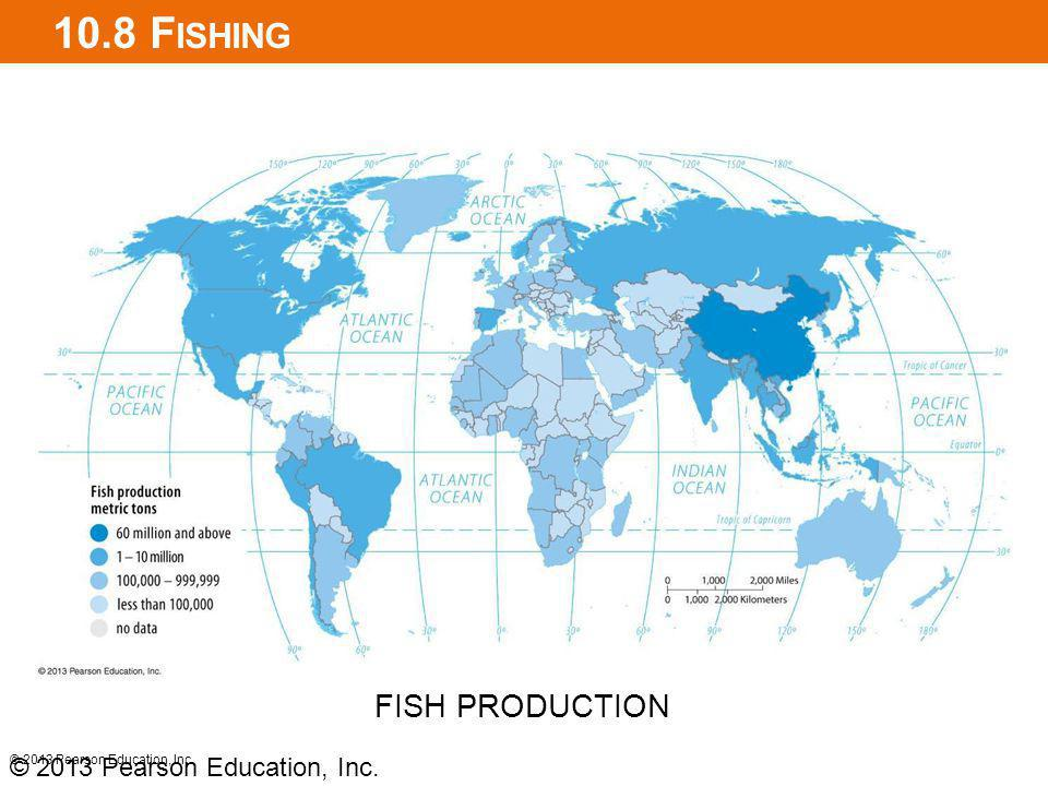10.8 Fishing FISH PRODUCTION © 2013 Pearson Education, Inc.