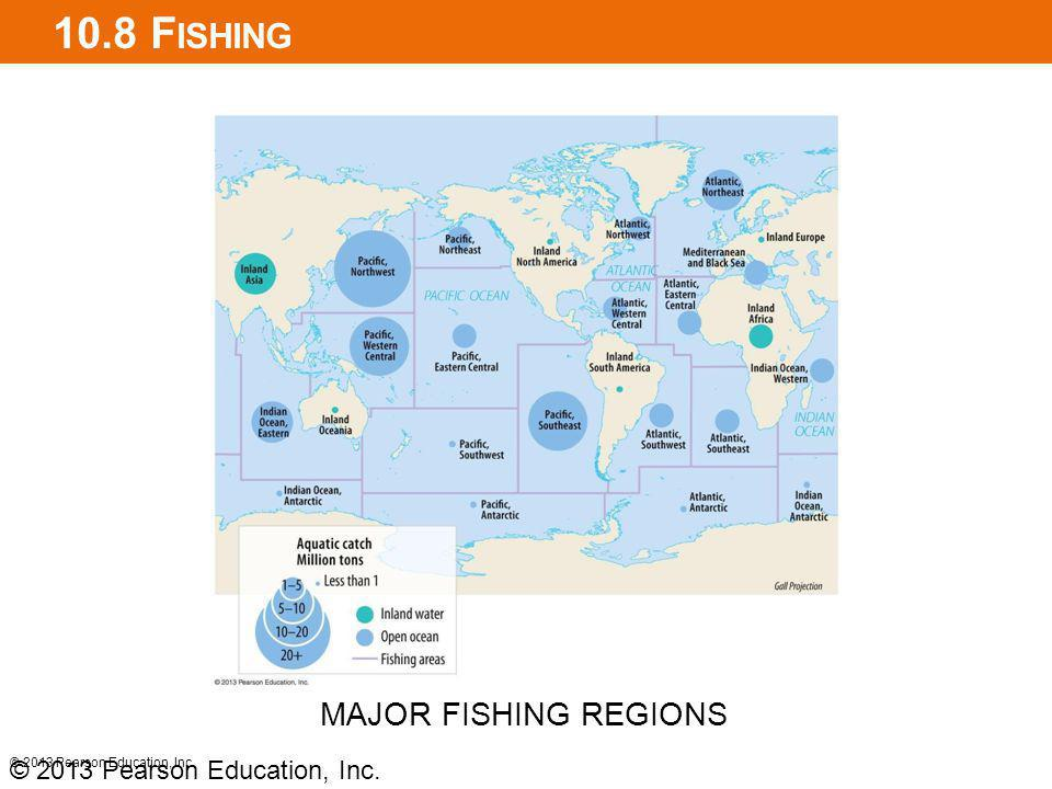 10.8 Fishing MAJOR FISHING REGIONS © 2013 Pearson Education, Inc.