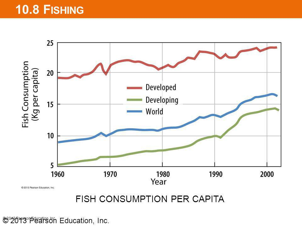 10.8 Fishing FISH CONSUMPTION PER CAPITA