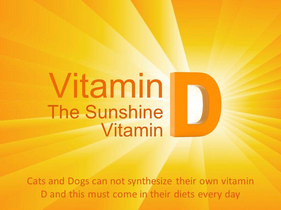Vitamin The Sunshine Vitamin