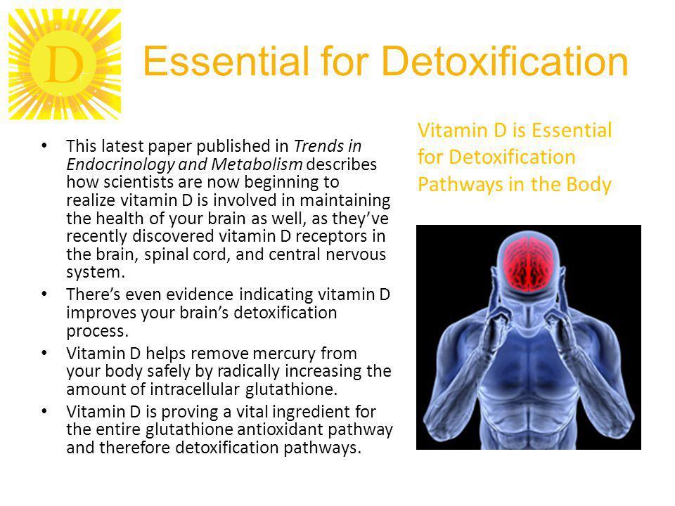 Essential for Detoxification