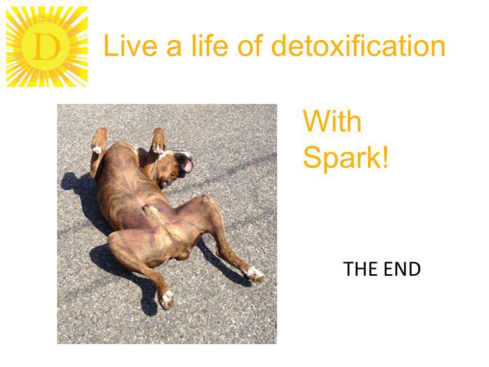 Live a life of detoxification