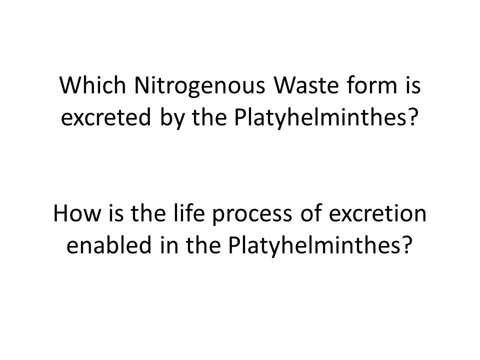 Which Nitrogenous Waste form is excreted by the Platyhelminthes