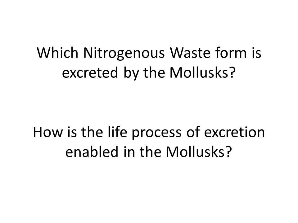 Which Nitrogenous Waste form is excreted by the Mollusks
