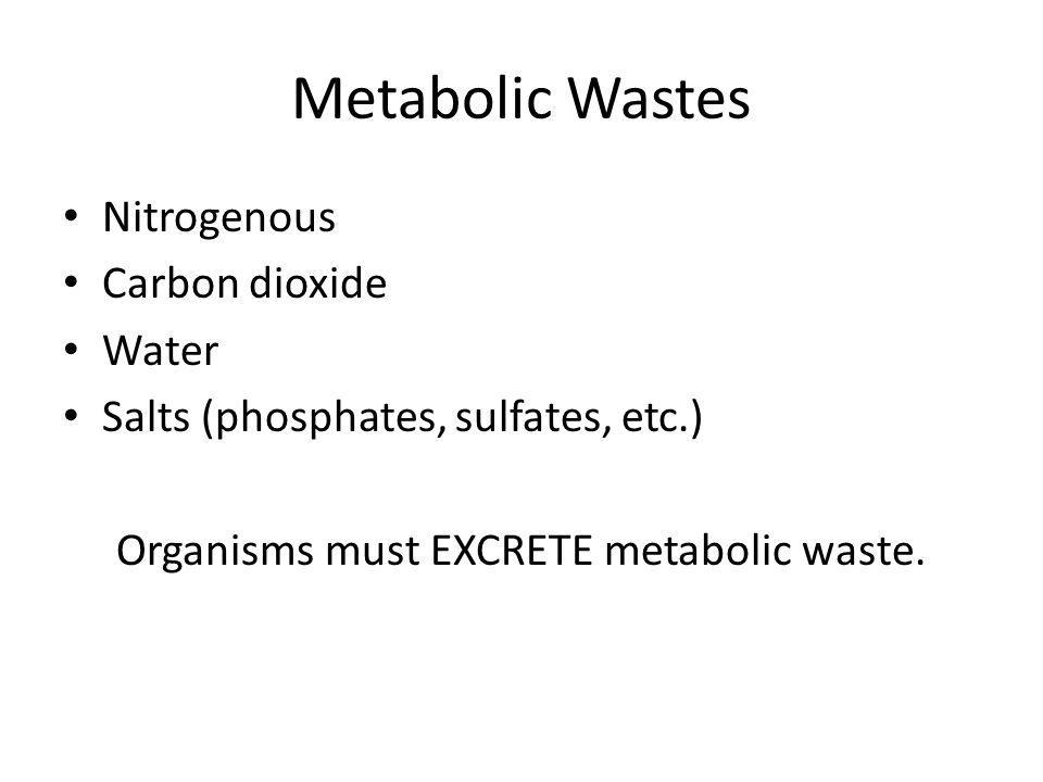 Organisms must EXCRETE metabolic waste.