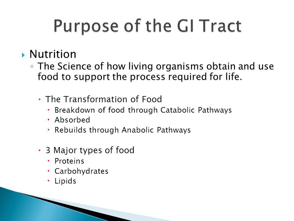 Purpose of the GI Tract Nutrition