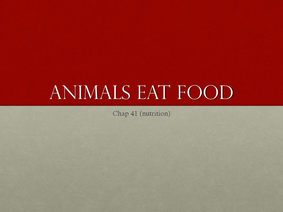 Animals Eat Food Chap 41 (nutrition)