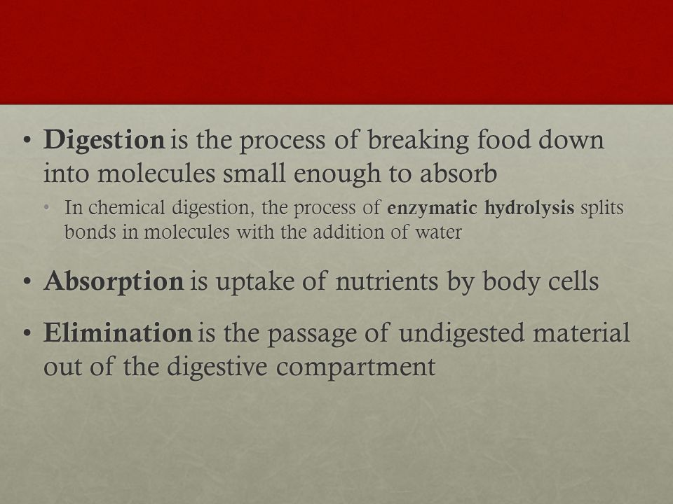 Absorption is uptake of nutrients by body cells
