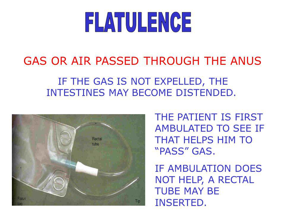 FLATULENCE GAS OR AIR PASSED THROUGH THE ANUS