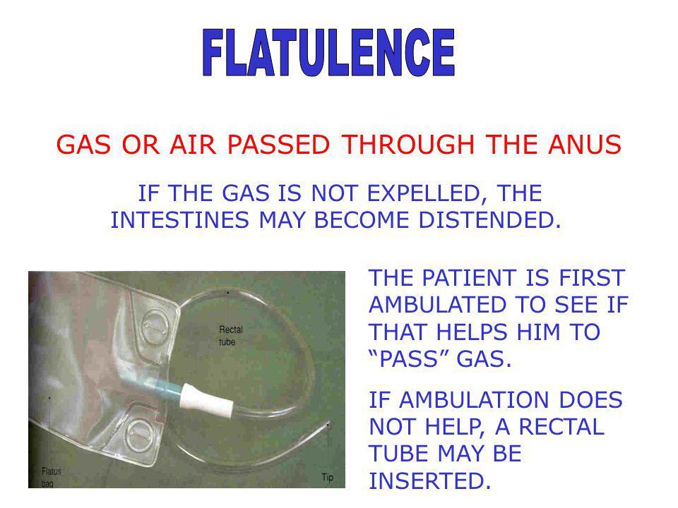 FLATULENCE GAS OR AIR PASSED THROUGH THE ANUS