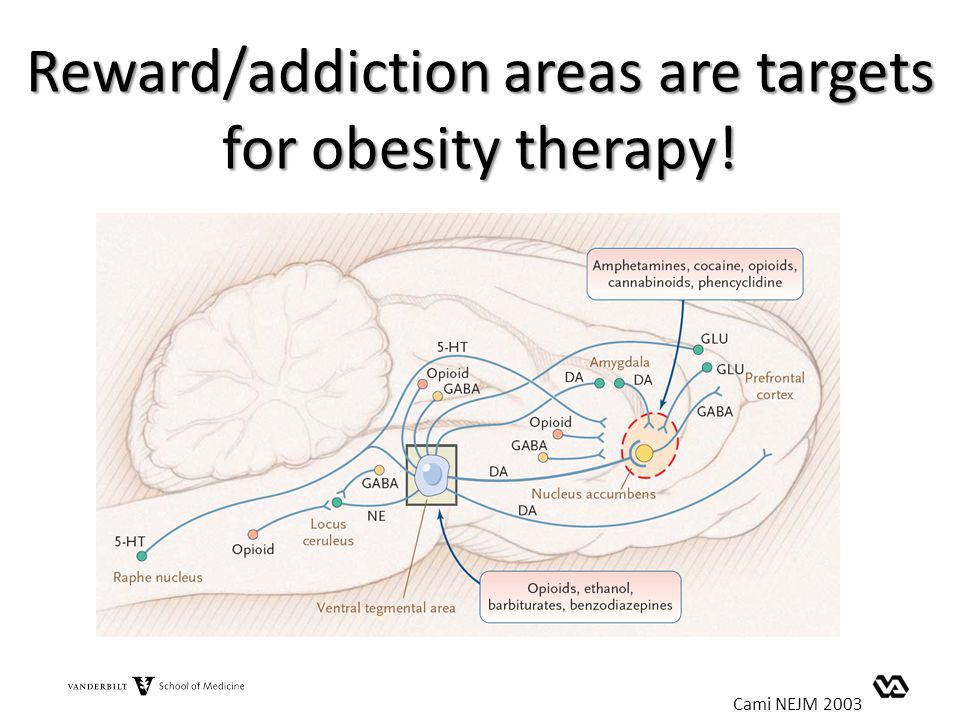 Reward/addiction areas are targets for obesity therapy!