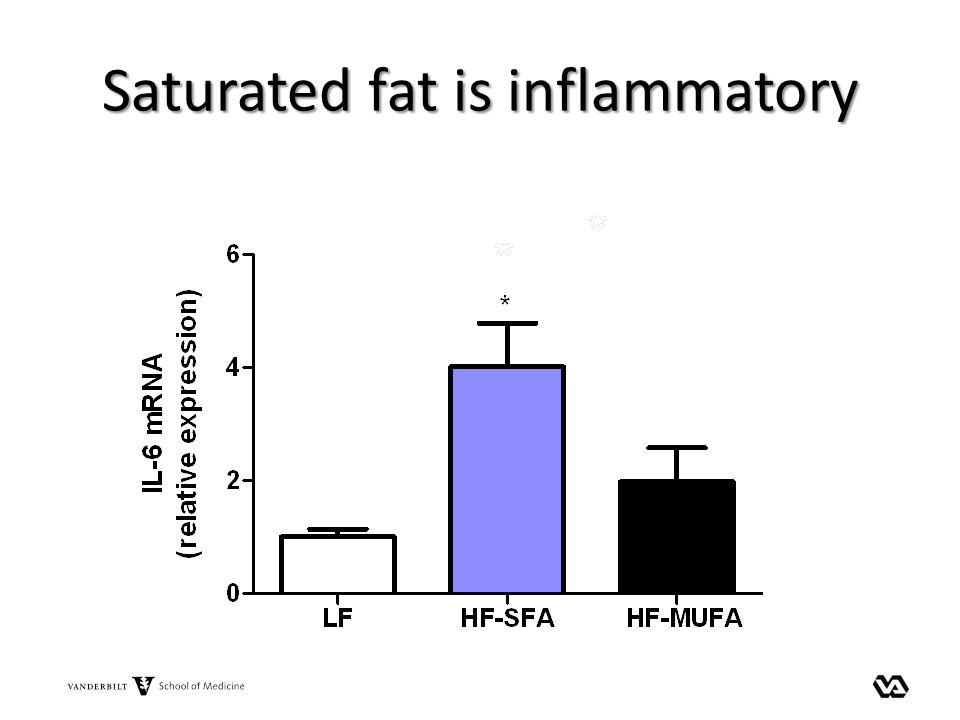 Saturated fat is inflammatory
