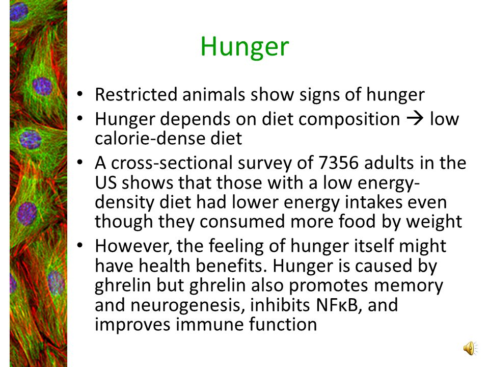 Hunger Restricted animals show signs of hunger