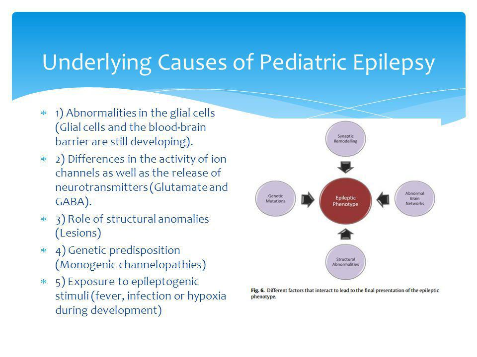 Underlying Causes of Pediatric Epilepsy