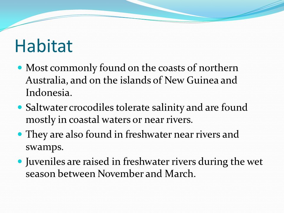 Habitat Most commonly found on the coasts of northern Australia, and on the islands of New Guinea and Indonesia.