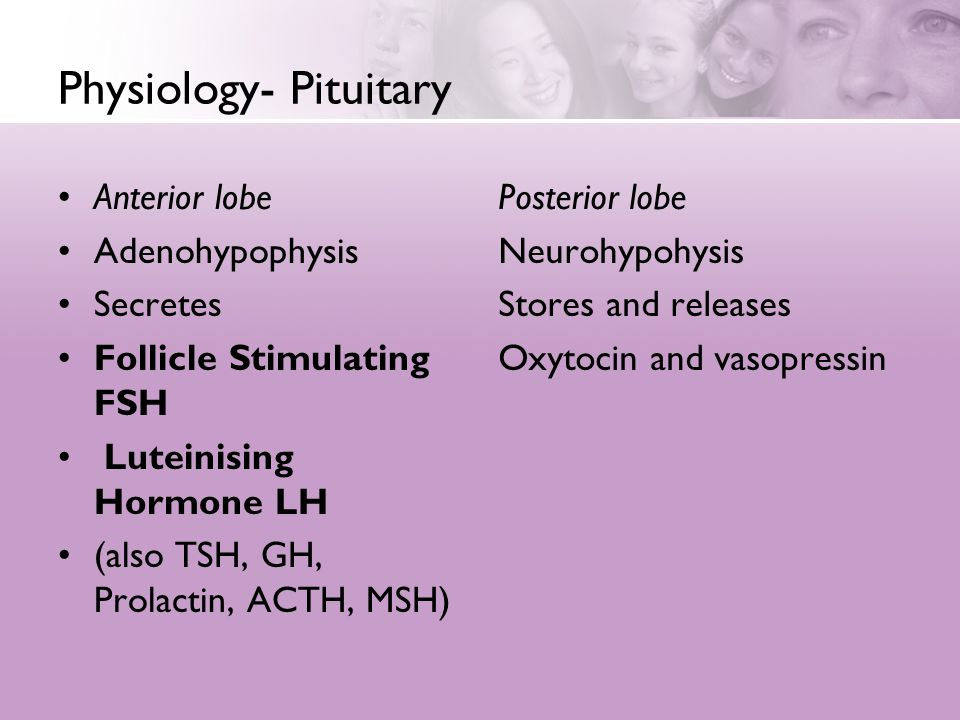 Physiology- Pituitary