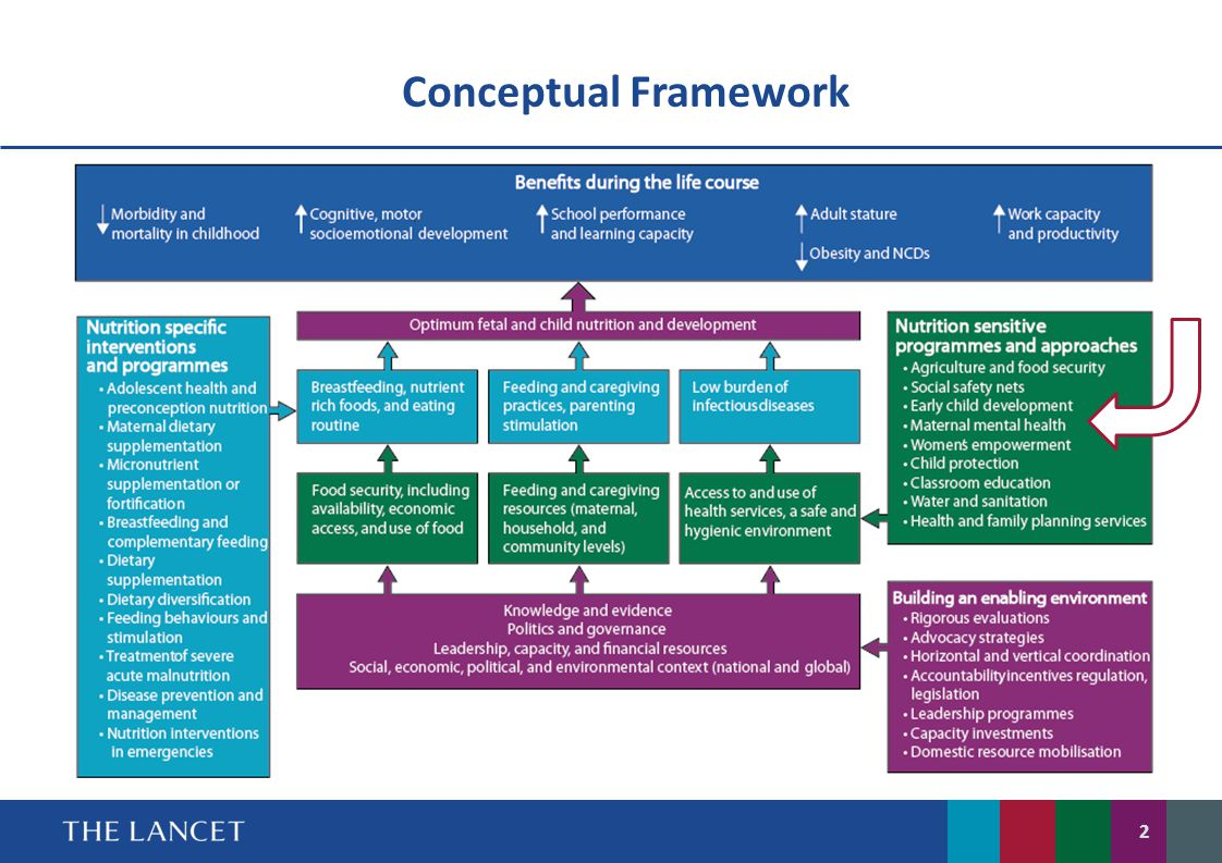conceptual framework 2 Read chapter 1 a new conceptual framework: science, engineering, and technology permeate nearly every facet of modern life and hold the key to solving man.