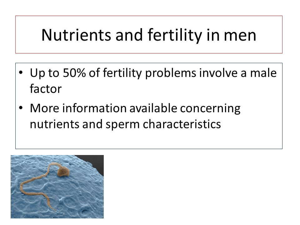 Nutrients and fertility in men
