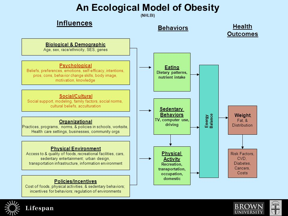 An Ecological Model of Obesity