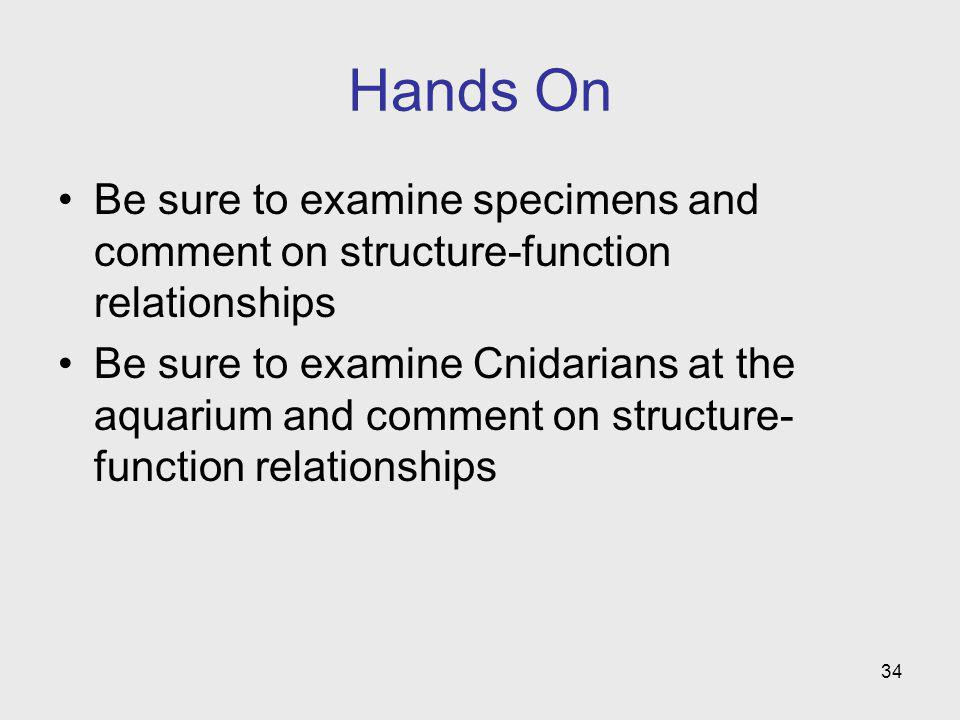 Hands On Be sure to examine specimens and comment on structure-function relationships.