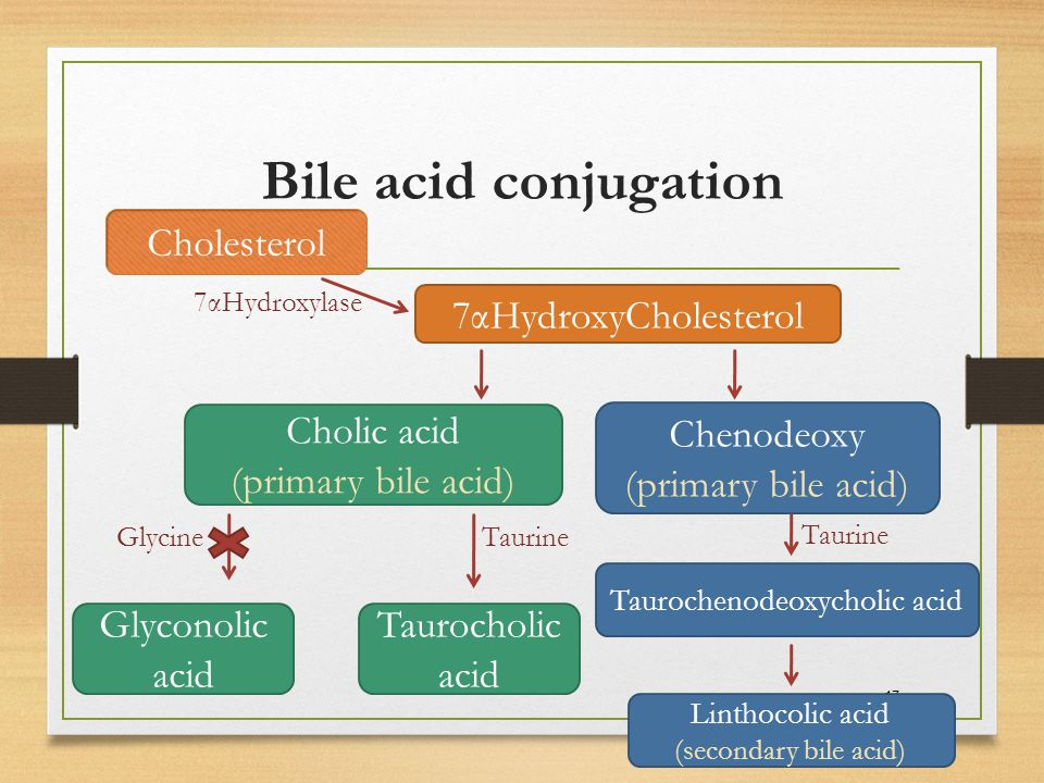 Taurochenodeoxycholic acid